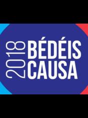 04 Bedeis Causa 2018